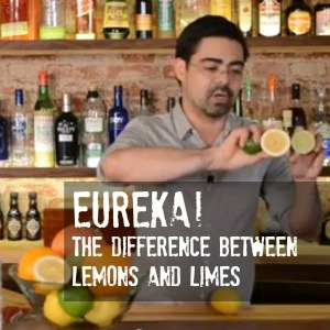 Learn the difference a Lemon or Lime will make in your cocktail