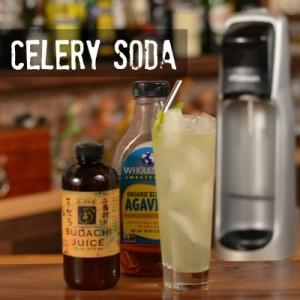 Celery Soda Recipe