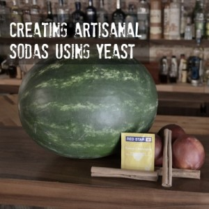 Fruit juice and yeast