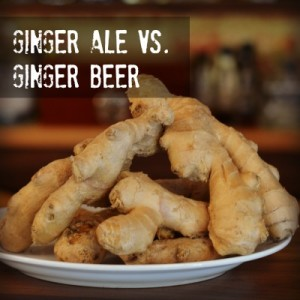 Pile of Ginger, let's get busy